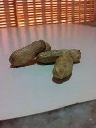 Java Peanut