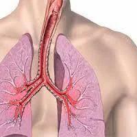 Asthma Treatment Service