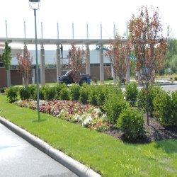 Hospital Land Consulting Services