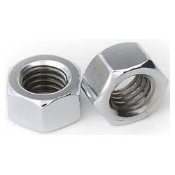 SS 202 Hex Nut