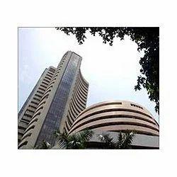 Forex trading in navi mumbai