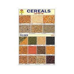 Cereals and Pulses Chart | United Publication | Manufacturer