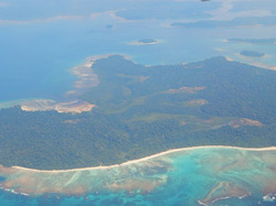 Explore Andaman Package Tours