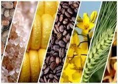 Agro Commodity