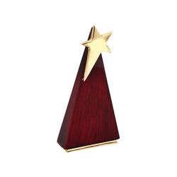Shining Star Award