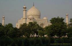 Birding With Taj Mahal Adventure Tours