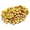 Dhania Seed