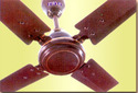 Caesar Ceiling Fan