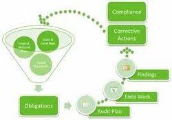 Management Audit Service