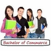Bachelor Of Commerce (b.com)