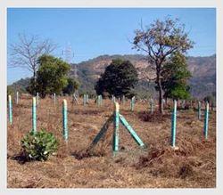 Land & N. A. Plot (Palghar - Shirgaon)