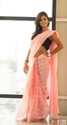 Splash Of Pink Chikankari Saree