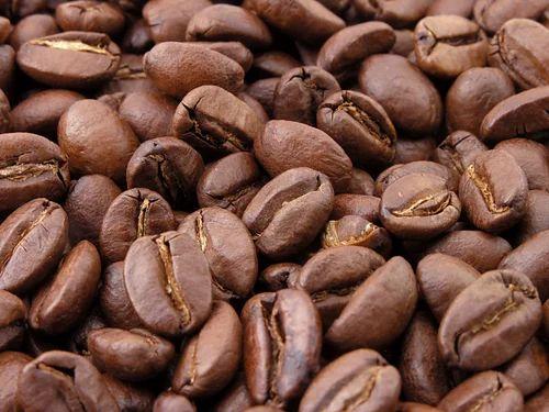 Certified Organic Arabica Coffee Bean at Rs 550/19 | Arabica Coffee Beans |  ID: 6587588848