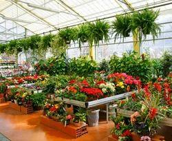 Horticulture Plantation Service