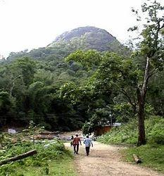 Kalikesam in Nagercoil, Putheri by Mokshara Soft   ID: 7239333291
