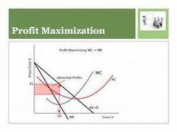 profit maximization services