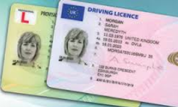 Driver License Services in Hyderabad