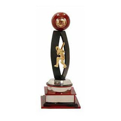Cricket Resin Trophy