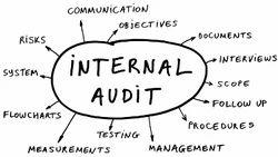Internal Auditing of Firms