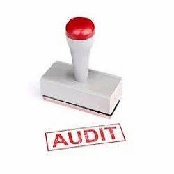 Audit Stipulations