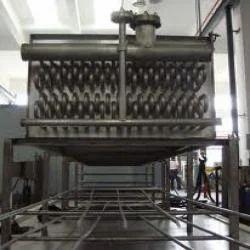 Frozen Vegetable Processing Plant