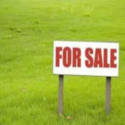 Plot/Land Sales