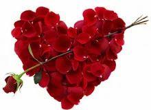 Anniversary flowers and exotic flowers retailer ashok florist bhopal
