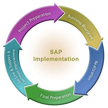 plan to produce sap