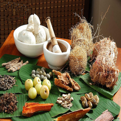 herbal ayurvedic medicines in bengaluru karnataka india indiamart