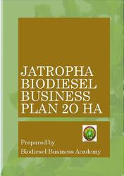Jatropha Biodiesel Business Plan 20 HA