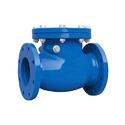 Cast Iron Reflux Valves