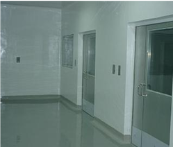 Polyurethane Coating Wall Economical