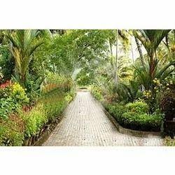 Horticulture Maintenance Service