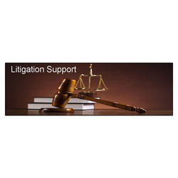 Intellectual Property Litigation Support