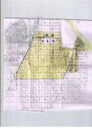 55 Acre Land At Bawal Area, Size/ Area: Shajapur