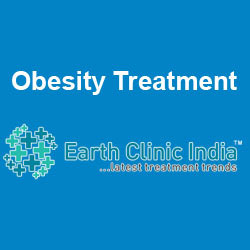 Obesity Treatment Services
