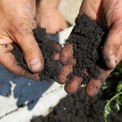 Soil Penetration Test Service