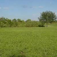Agricultural Land Dealing Service