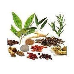 Ayurvedic Herbal Product Testing Services