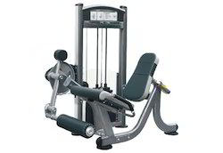 Viva Leg Extension Machine IT9005-IT9305