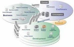 Development of the Organization Structure