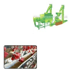 Feed Plants for Poultry