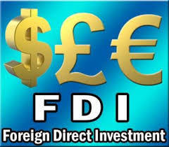 Foreign Direct Investment Consultancy