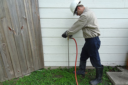 Image result for Termite Treatment services