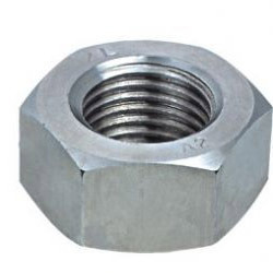 SS 310 Hex Nut