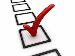 Surveys Services