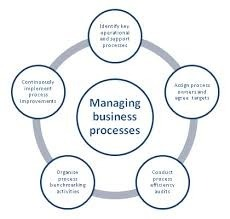 Business Process and Audit