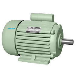 Induction Motors for Domestic