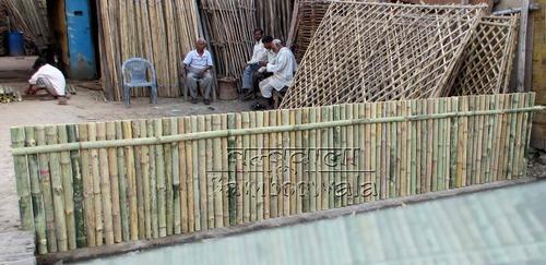 Big Bamboo Fence At Rs 100 Square Feet Bamboo Fencing