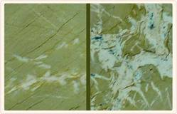 Green Marble Stone, for Countertop
